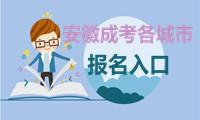 2020安徽成人高考城市报名入口
